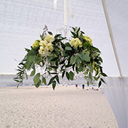 Wedding Arches & Decorations